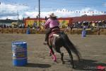 Liskeard Bikers Reunion Horse Rode