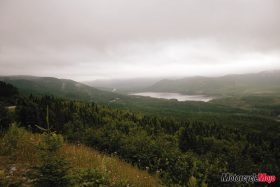 picture of the Newfoundland coast