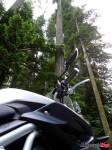 Motorcycle-Mojo_48P1040088_Tofino_Triumph