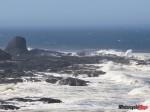 IMG_1148 Cape Perpetua Area
