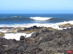 IMG_1153 Sea level Cape Perpetua