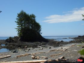 Vancouver Island Shore