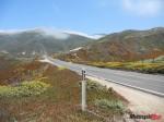 big sur scenic byway (3)