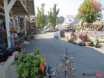 Eastsound street scene, Orcas Island