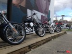 A lineup of Harley-Davidsons and Triumphs outside the _lifestyle & motrocycle boutique