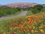 enchanted-rock-and-wildflowers-credit-steve-rawls