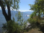 16 The view of Okanagan Lake from Kickininee Provincial Park