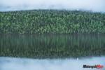 Alaska Green Landscape