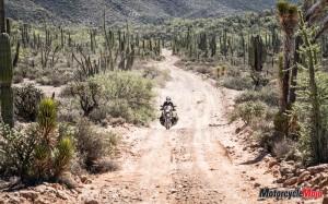 Riding a Motorcycle Through Mexico