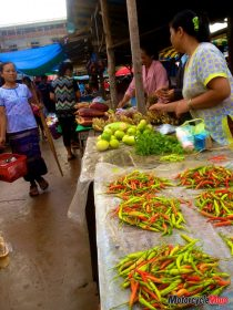 The Local Markets in Asia