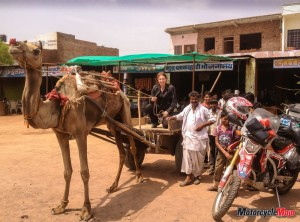 Riding a Camel-Pulled Cart in India