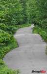 A Bumpy Trail in New Hampshire
