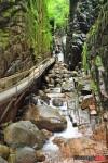 Pemigewasset River Walking Trail