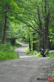 Riding Through the Forests of Vermont