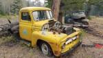 1950s R100 International Harvester half ton Mosley Creek FSR (mid 1950s) (1)